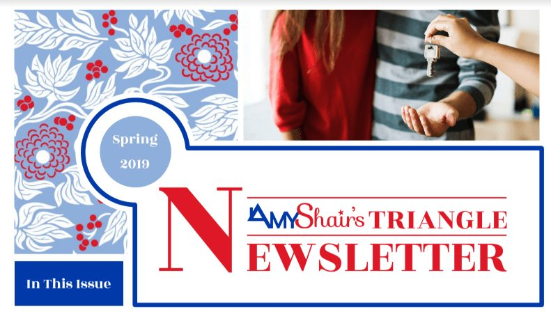 Spring 2019 Newsletter for Amy Shair's Website